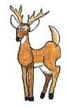 Deer by brazilianferalcat