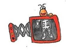 Twiddlebug and the X-ray by brazilianferalcat