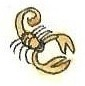 Scorpion by brazilianferalcat
