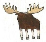 Moose by brazilianferalcat