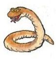 Snake by brazilianferalcat
