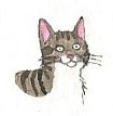 Kitten by brazilianferalcat