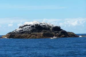 Bird Poo Island by idril-telemnar