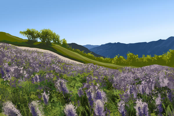 California Flowers by ChristyTortland