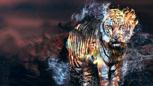 Stripes of fire