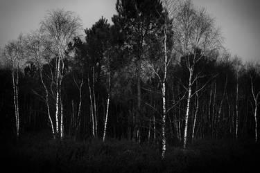 Val Sans Retour by TrollDuNord