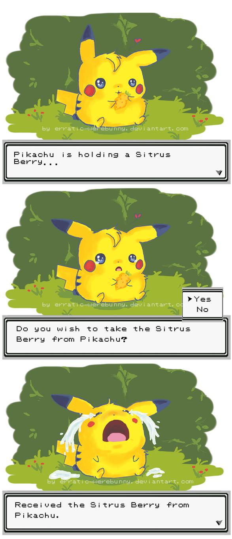 Sitrus Berry by erratic-werebunny