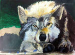 Wolf_Acrylics