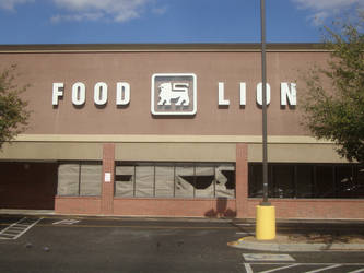 Abandoned Food Lion by Floppy-Bunny