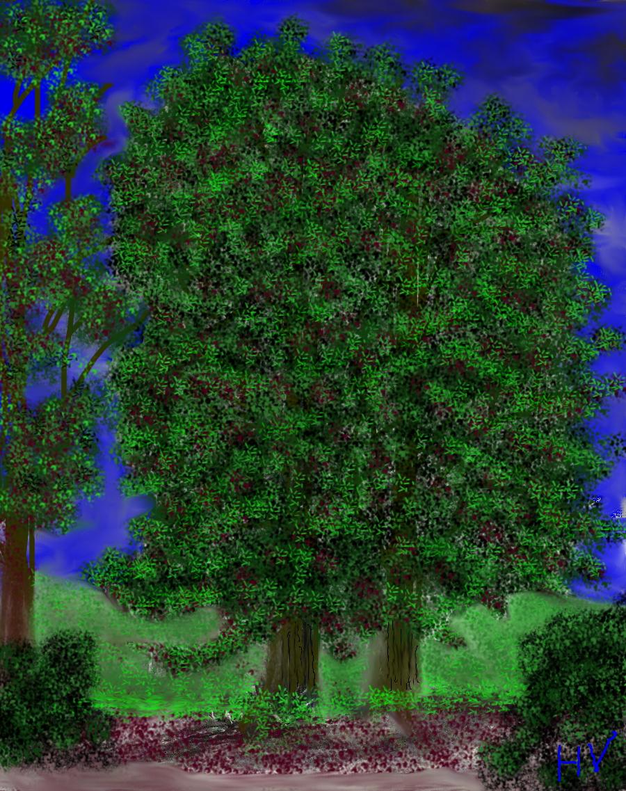 The Trees. by Henry V. 2012. by HenryValdROCKS