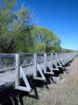 Oturehua Rail Bridge