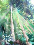FRIM - Forest Reserve3