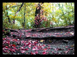 world full of leaves by Pitrisek