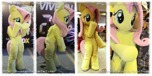 Fluttershy fursuit by KylieDracani