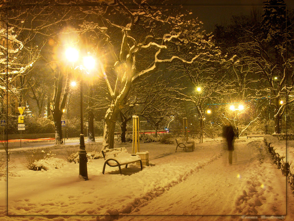 Winter by tomeq