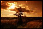 Autumn 2006 part 2