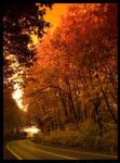 Autumn 2006 part 4
