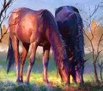 Horsey Study