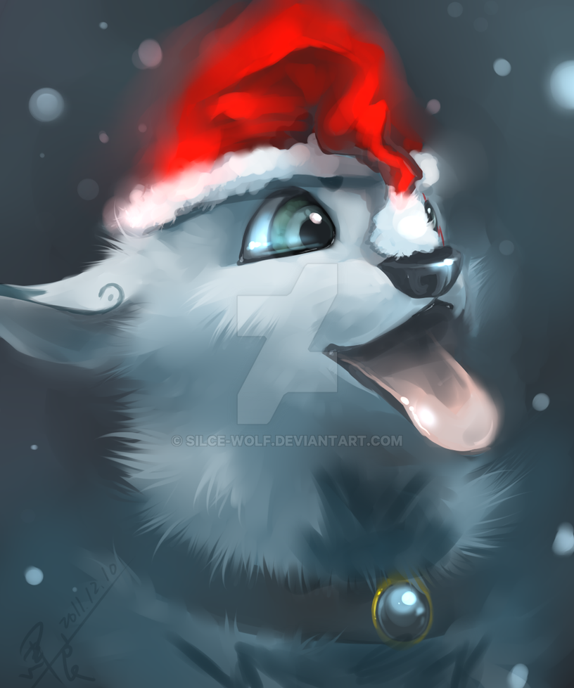 Christmas gifts Yi by Silce-Wolf on DeviantArt
