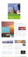 - Brochure Pamphlet -