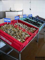 Pescaderia - Chilean sea food by ephedrina-photos