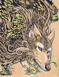 The Dog of the Mountain - Honshu Wolf
