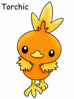 Torchic by Mountain-King