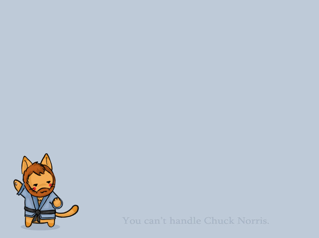 Kitty Chuck Norris - Wallpaper by *bakabaka on deviantART