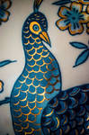 20150607 pavo by carbajo