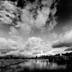 .: Dark River :.