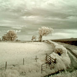 Infrared at Dusk by DavidCraigEllis