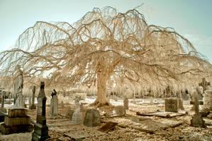 Infrared Churchyard by DavidCraigEllis