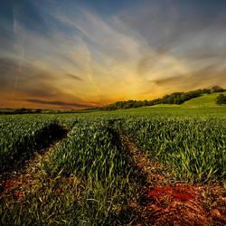 Herefordshire New Skies
