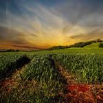 Herefordshire New Skies by DavidCraigEllis