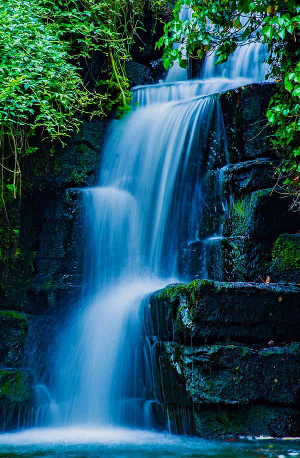 Penllergaer Waterfall IV