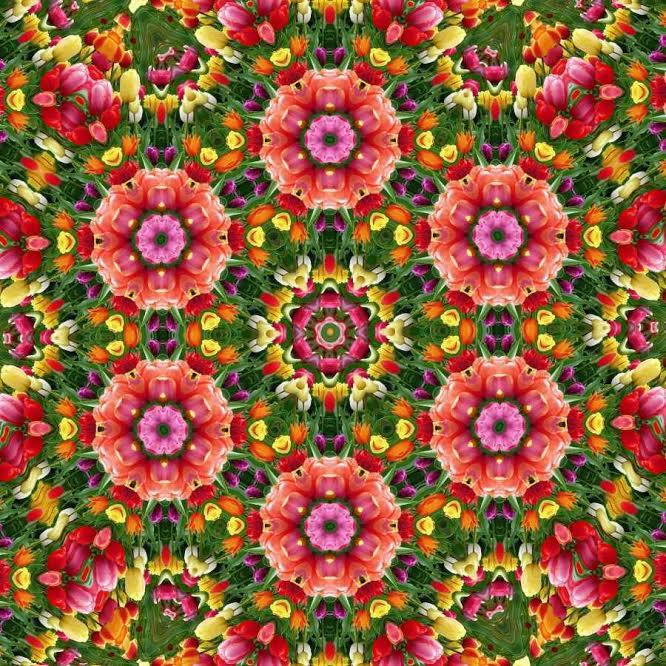 SACRED GEOMETRY ART #120 - Meadow Flowers Art by Sankofastudies
