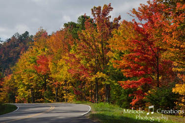 Fall on Foothills Parkway by violakat03