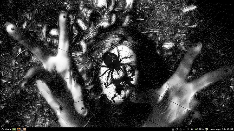 ArachMint Screenshot by Apolonis