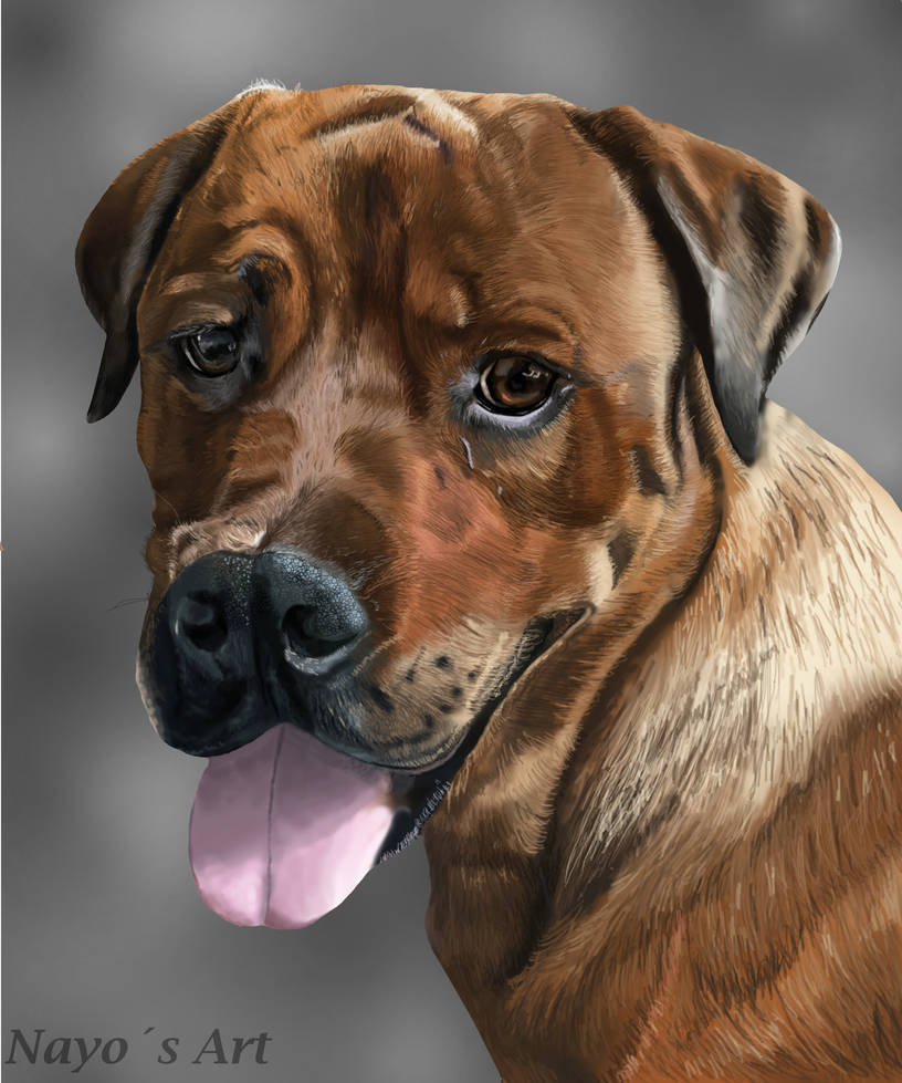Dog Eve