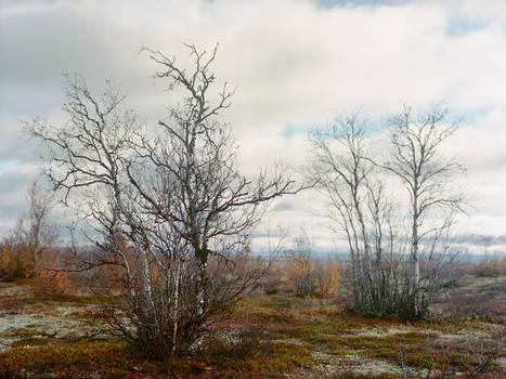 100913 - Finland - Road 93..