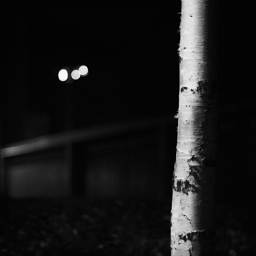Enjoy The Silence by JakezDaniel
