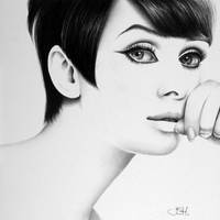 Audrey  '60s Minimal