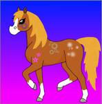 cute pony