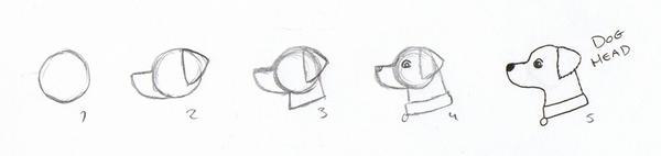 Simple Dog Head Tutorial By Lottjuh On DeviantArt
