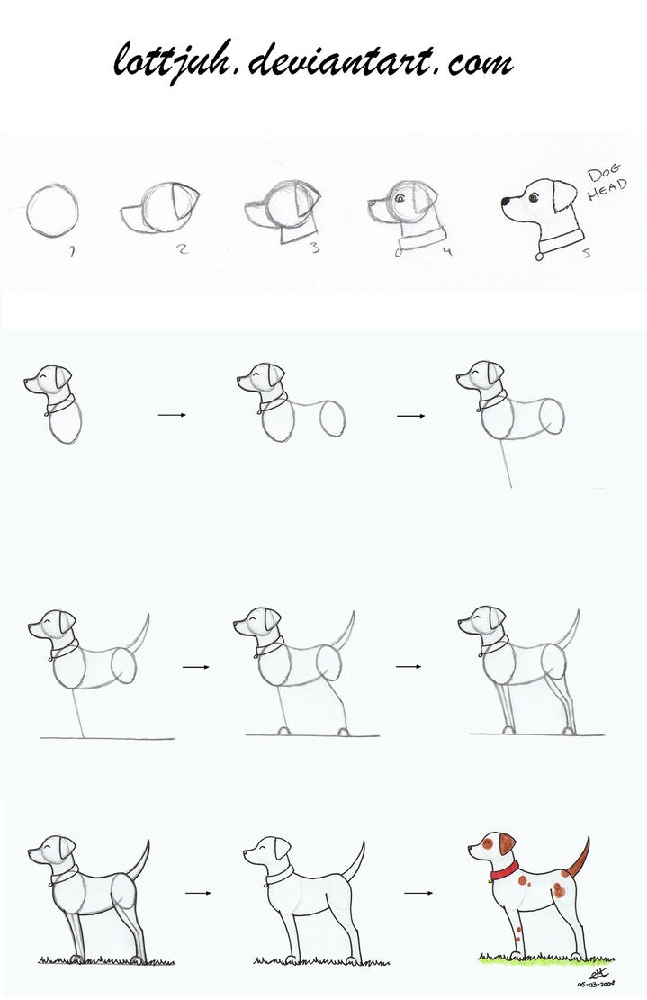 Simple Dog Body Tutorial by Lottjuh
