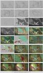 Dragons vs kittens - WIP chart