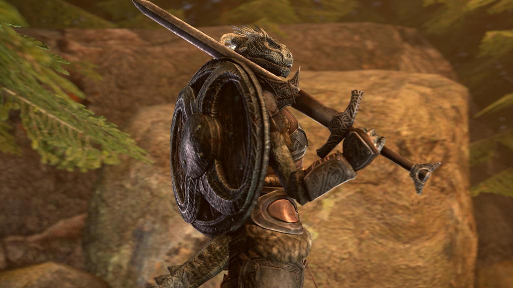 Argonian Knight - Skyrim by Zero-hka on DeviantArt