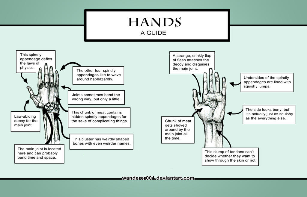 Hands - A Guide by Wanderer001