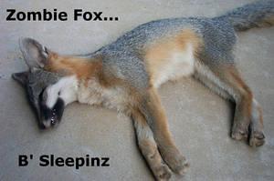Zombie Fox... by ScottyDM