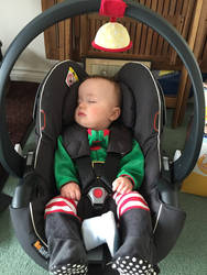 Christmas is a tiring time for elves